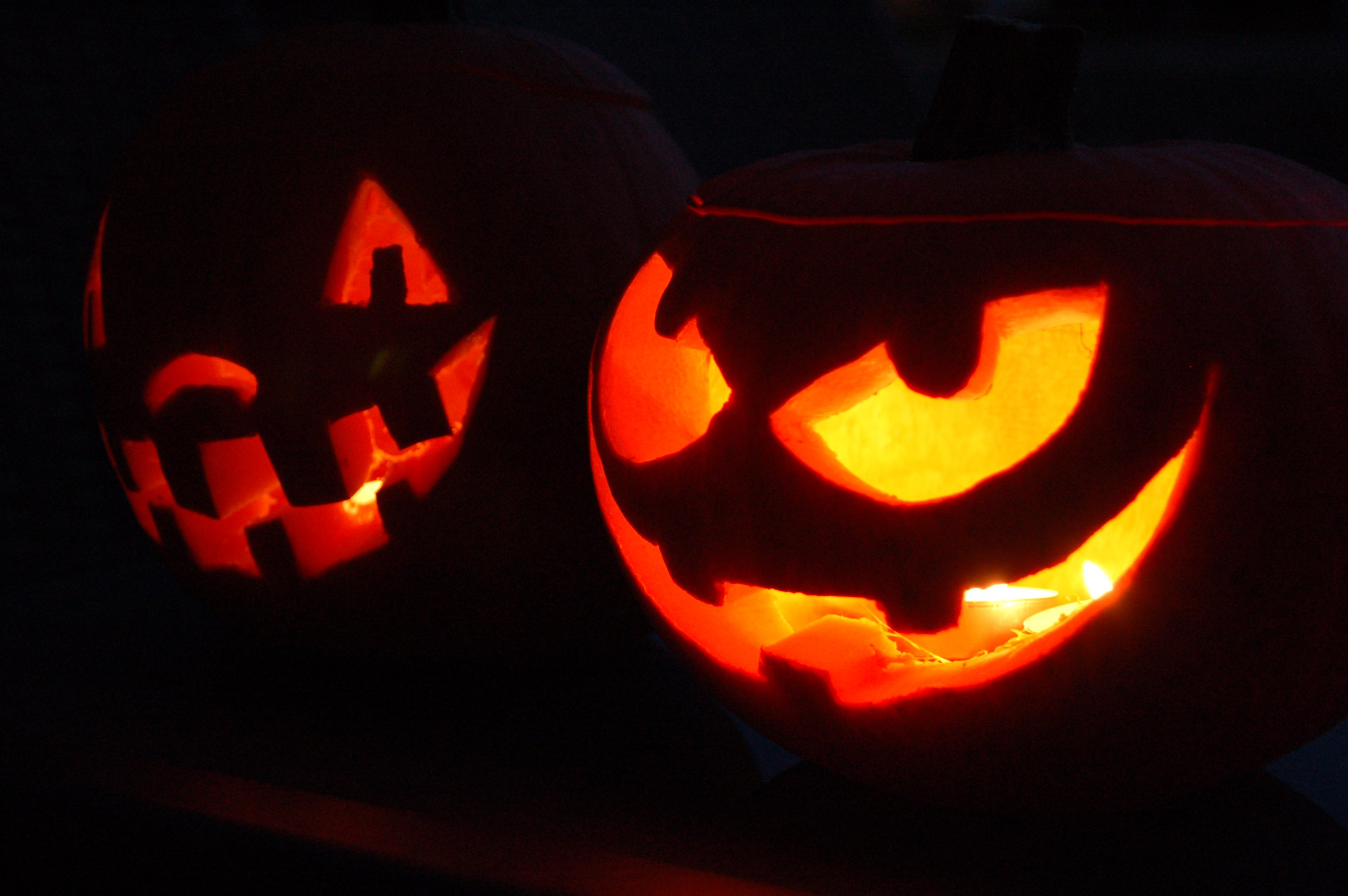 Florida Gears Up for Halloween with Haunted Happenings, Scary Good Fun &  More this Weekend!